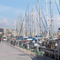 Harbor of Palma de Mallorca